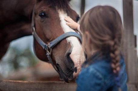 Уроци по конна езда